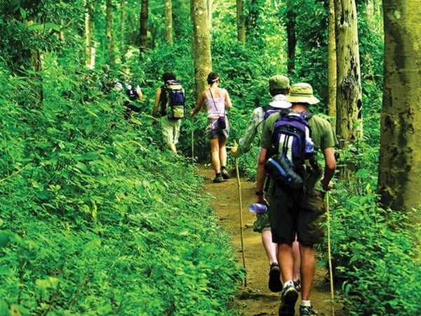 Trekking at Forest Escape Koyna Resort